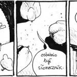 Gołębie i Woły odc. 2 ? Słonecznik