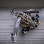 Chińscy projektanci przerobili stary rower na mobilną bibliotekę przypominającą biedronkę
