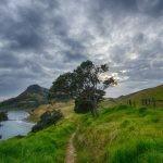 """Zdjęcia do nowego serialu na motywach """"Władcy Pierścieni"""" Tolkiena będą kręcone w Nowej Zelandii"""