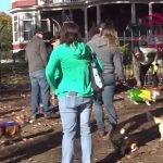 Psy rasy corgi miały imprezę halloweenową pod domem Stephena Kinga w Bangor