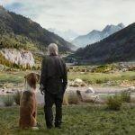 """""""Zew krwi"""" z Harrisonem Fordem ? nowa ekranizacja powieści Jacka Londona od piątku w kinach. Zobacz fragmenty filmu"""