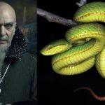 Nowy gatunek węża nazwany na cześć Salazara Slytherina z serii książek o Harrym Potterze
