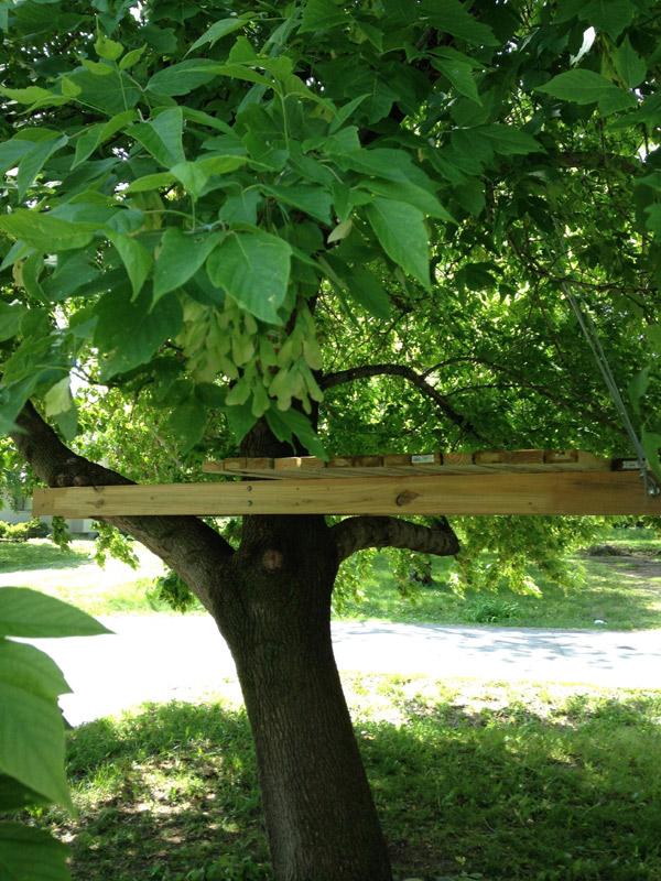 kącik do czytania na drzewie - 2
