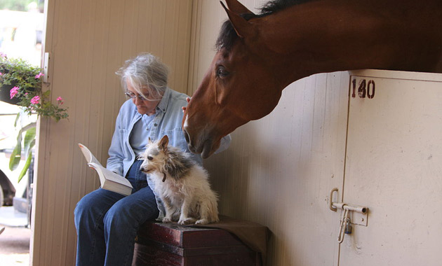 czytanie a starość