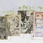 Komiksowy ogródek Koshiego Kawachi