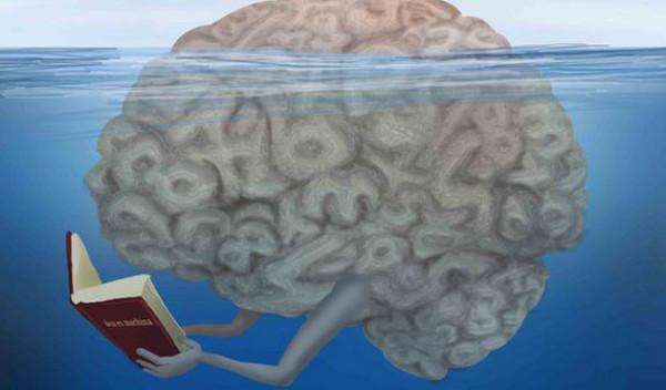 czytanie-mozg-ksiazki
