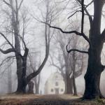 Fotografie inspirowane baśniami braci Grimm autorstwa Kiliana Schönbergera