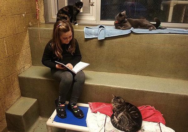 dzieci-czytaja-kotom-2