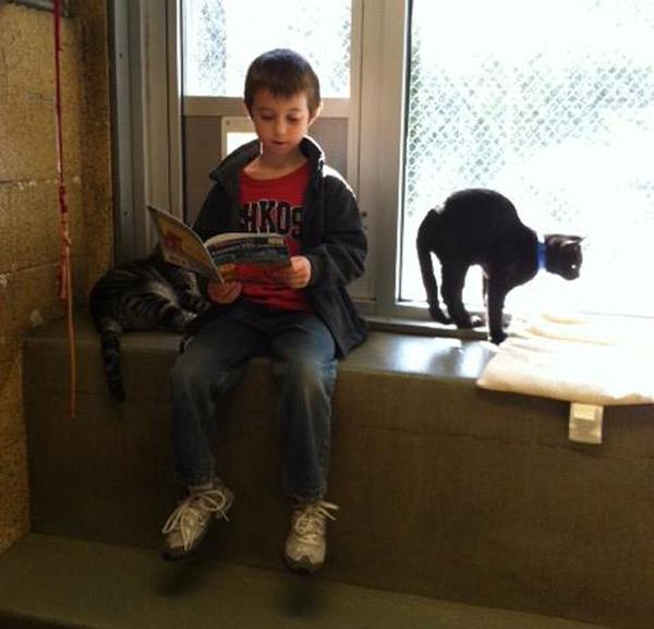 dzieci-czytaja-kotom-4