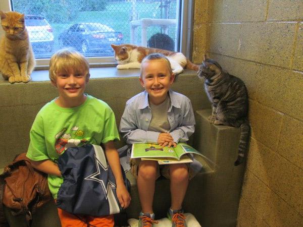 dzieci-czytaja-kotom-8