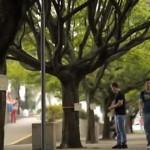 Drzewa w kolumbijskim mieście Medellín oferują czytelnikom darmowe ebooki