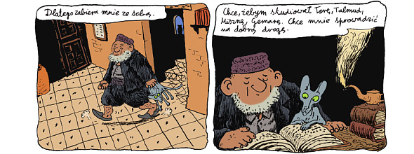 kot-rabina-rysunek2