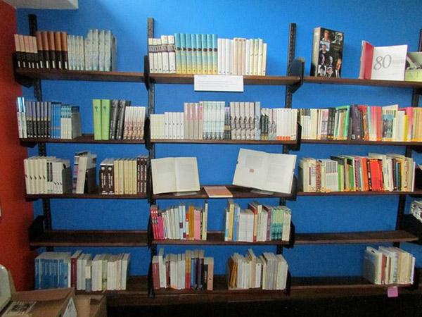biblioteczka-Doris-Lessing-3