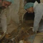 Znaleziono trumnę Miguela de Cervantesa?