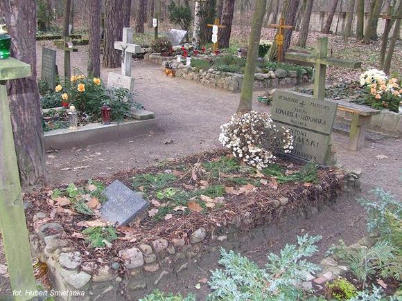 Antoni Słonimski (Cmentarz leśny, Laski)