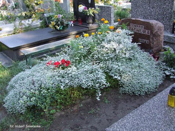 Edward Stachura (Cmentarz Komunalny Północny, Warszawa)