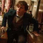 """Newton Scamander przybywa do Nowego Jorku. Nowy zwiastun filmu """"Fantastyczne zwierzęta i jak je znaleźć"""" od J.K. Rowling"""