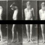 Walt Whitman autorem poradnika zdrowia dla mężczyzn. Zaleca jeść mięso, chodzić na polowania, nosić brodę i unikać prostytutek