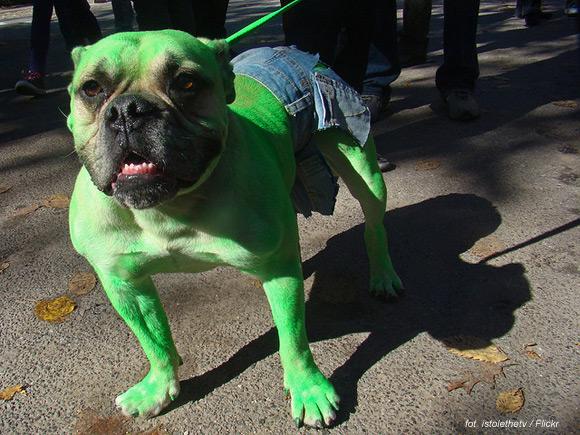 07-pies-hulk