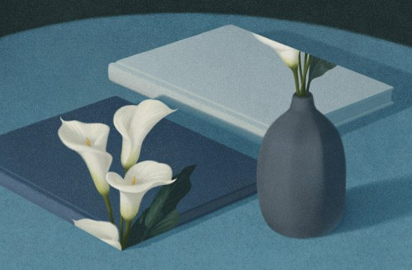 ksiazkowe-ilustracje-lee-03