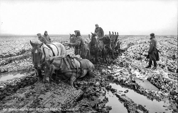 Rosja: Konie niemieckich żołnierzy pogrążone w błocie. Marzec, 1942
