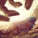 """""""Siedem minut po północy"""" – ekranizacja bestsellerowej powieści Patricka Nessa w kinach od 25 grudnia"""