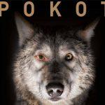 """Pierwszy zwiastun filmu """"Pokot"""" na podstawie powieści Olgi Tokarczuk!"""