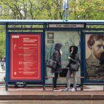 Literackie przystanki na ulicach Krakowa