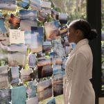 """""""Ponad wszystko"""" – ekranizacja bestsellera dla młodzieży Nicoli Yoon od dzisiaj w kinach"""