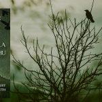 """Przeczytaj całe opowiadanie """"Powrót Hastura"""" ze zbioru """"Maska Cthulhu"""" Augusta Derletha"""